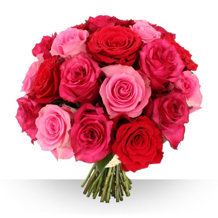 Naissance 21 gros boutons camaeu for Gros bouquet de fleurs
