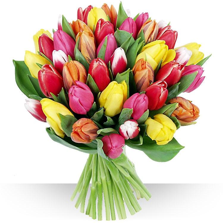Livraison de fleurs avec le fleuriste for Bouquet de fleurs prix