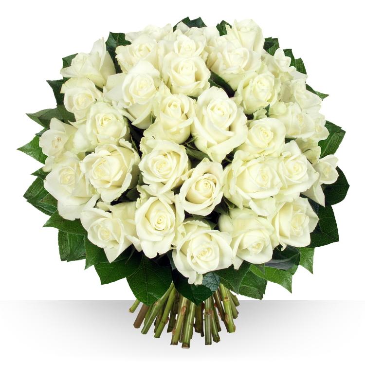 Préférence Anniversaire : 40 roses Platine YN27