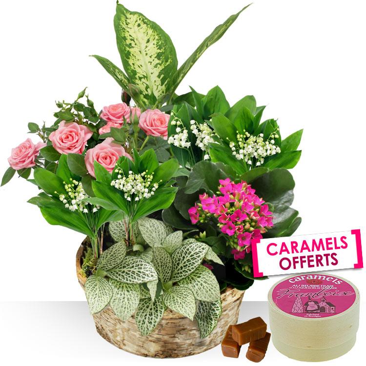 1er mai composition clochette for Fleurs et cadeaux
