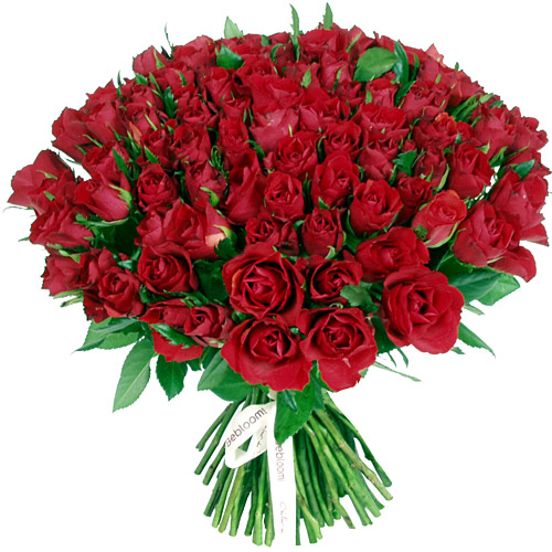 Bouquet de roses - 101 roses rouges