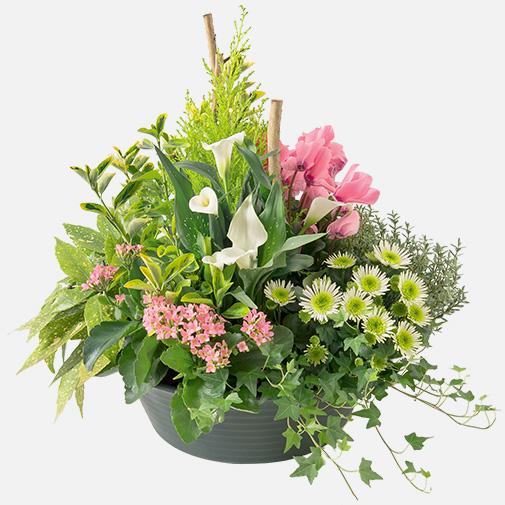Deuil grande coupe de plantes for Fleurs et cadeaux