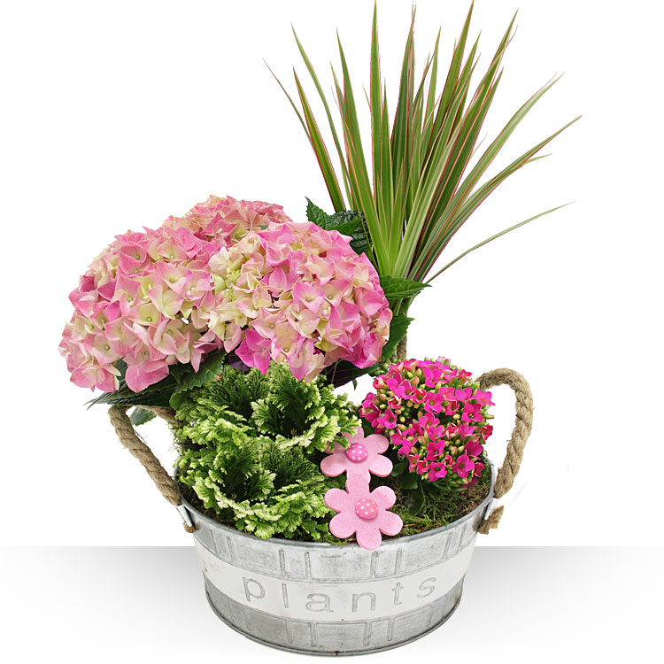 spcial printemps jardinire fleurie. Black Bedroom Furniture Sets. Home Design Ideas