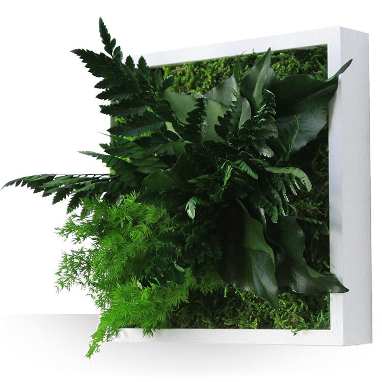 Anniversaire tableau v g tal - Tableau vegetal ...