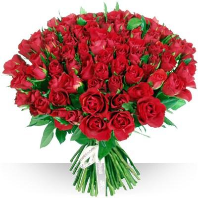 Populaire Anniversaire : 101 roses rouges CJ85
