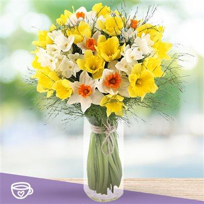 Fete Des Grand Meres Bouquet De Narcisses Varies Et Son Vase