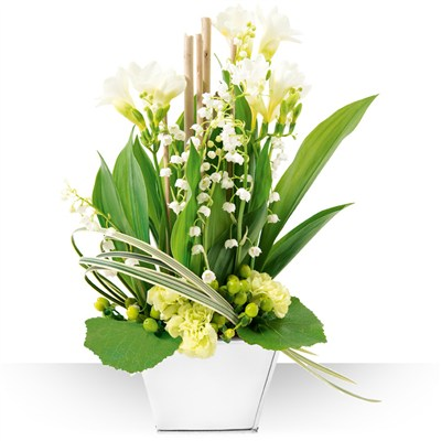 Livraison de muguet fleuriste 1er mai for Muguet livraison domicile