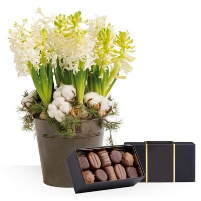 livraison express jardin d 39 hiver et ses chocolats. Black Bedroom Furniture Sets. Home Design Ideas