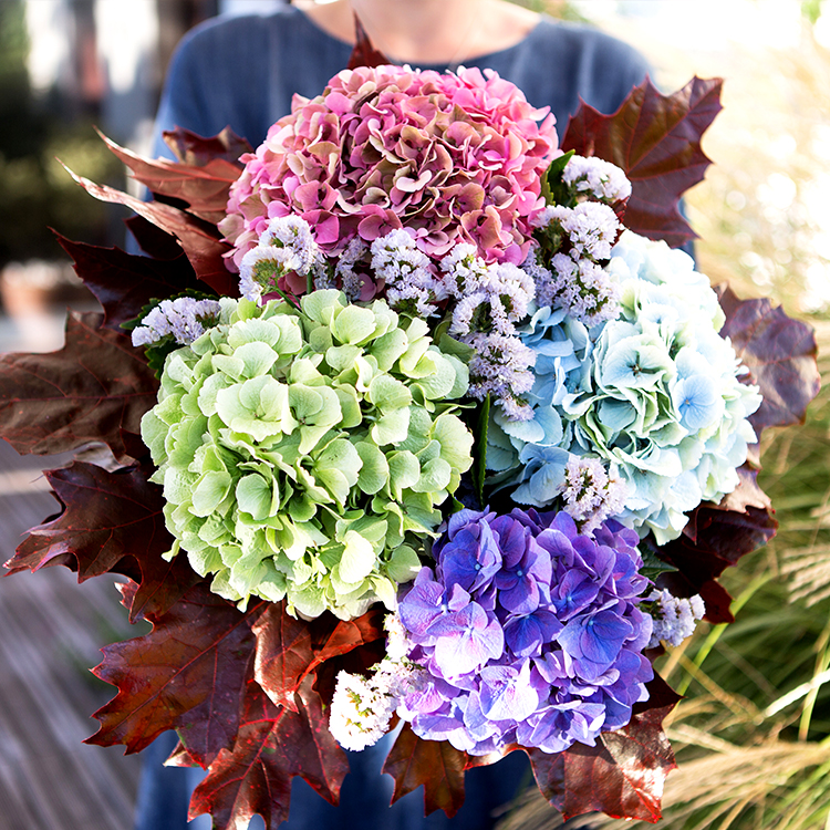 Collection Automne - BOUQUET D'HORTENSIAS XL -