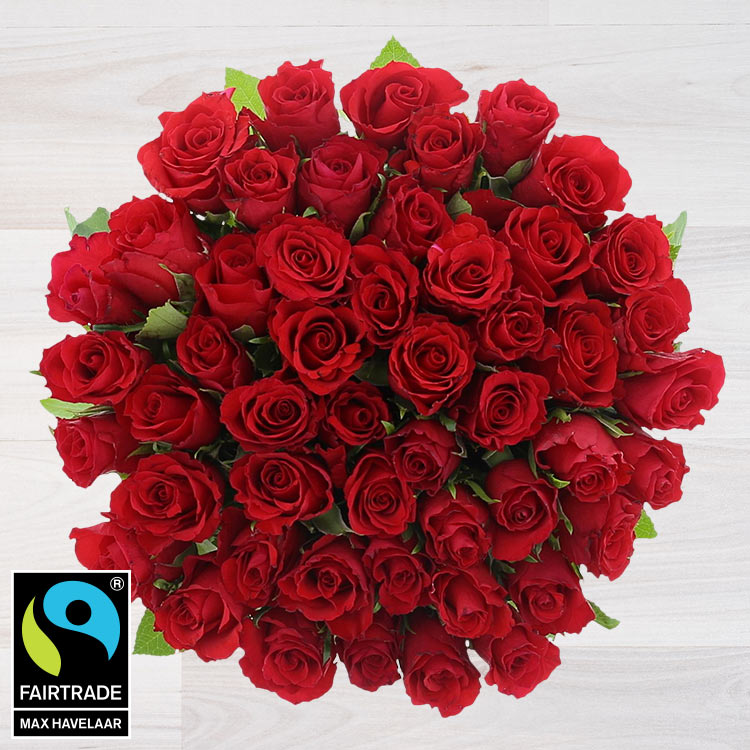 Amour - 50 ROSES ROUGES -