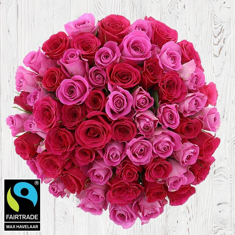 Amour - 60 ROSES EN CAMAÏEU ROSE -