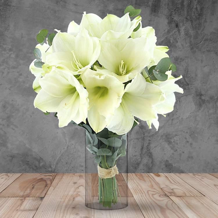 Collection Hiver - BOUQUET D'AMARYLLIS BLANC XL ET SON VASE -