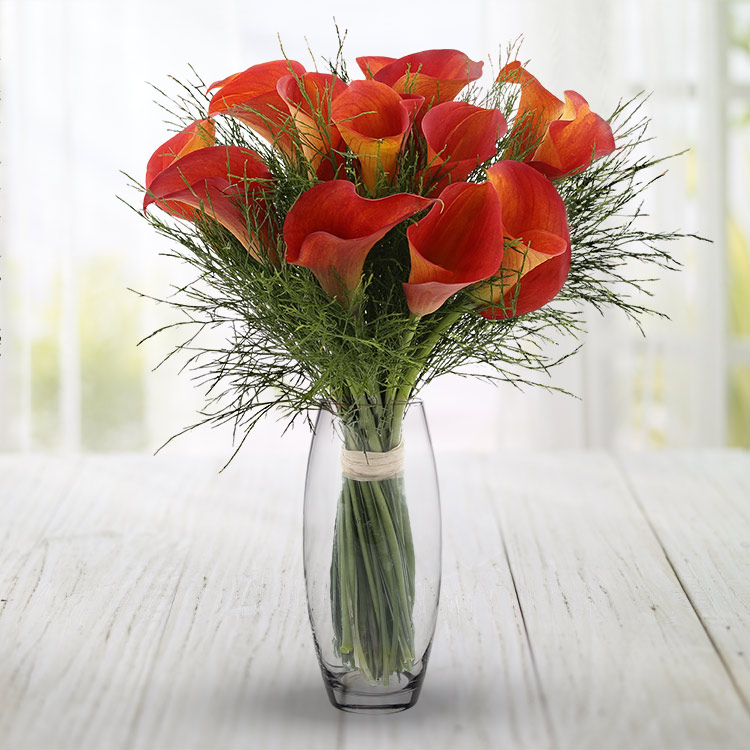 Anniversaire - BOUQUET DE CALLAS ORANGE ET SON VASE -