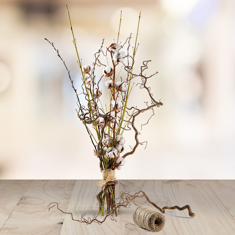 Collection Hiver - COTTON WOOD  -