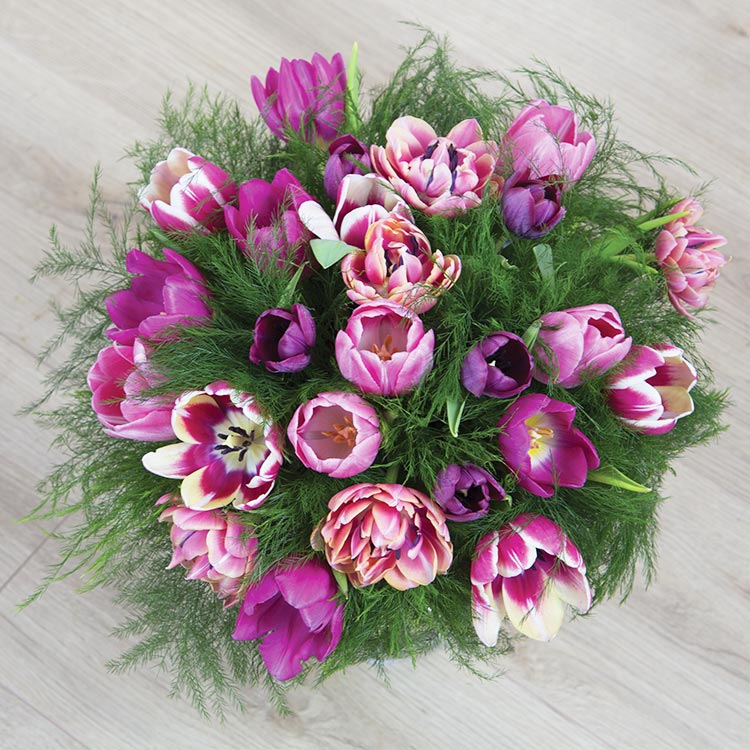 Collection Hiver - LOVE TULIPES -