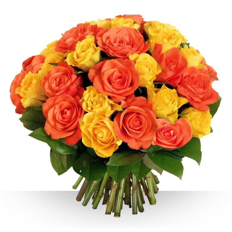 Félicitations - 40 ROSES SAFRAN -