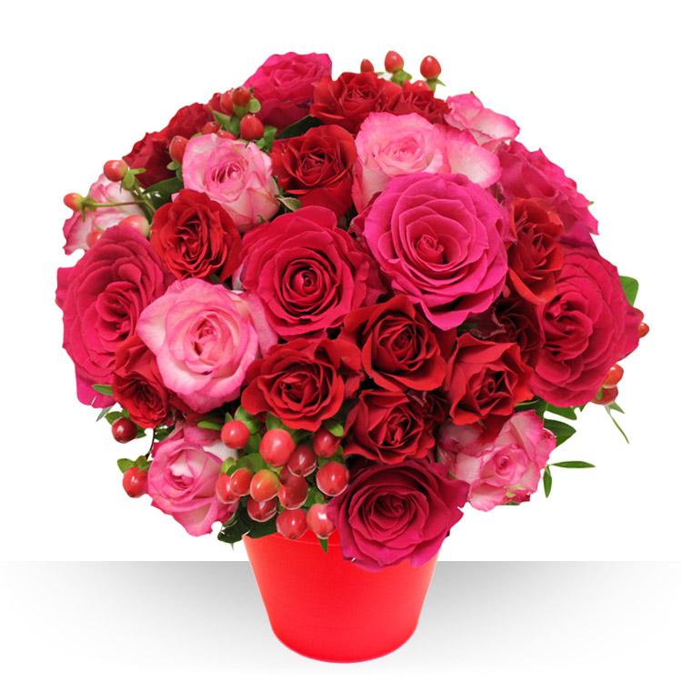 <b>Saint Valentin</b> - SAINT-VALENTIN XL -