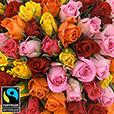 101-roses-variees-5332.jpg