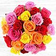 25-roses-variees-et-son-vase-4719.jpg