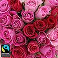 40-roses-en-camaieu-rose-et-son-vase-5344.jpg