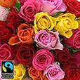 40-roses-et-ses-macarons-7205.jpg