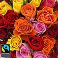 40-roses-multicolores-et-son-vase-5330.jpg