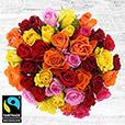 40-roses-multicolores-et-son-vase-5331.jpg
