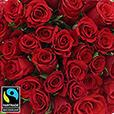 40-roses-rouges-5292.jpg