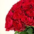 40-roses-rouges-7739.jpg