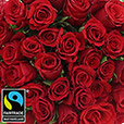 40-roses-rouges-chocolats-2987.jpg
