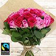50-roses-en-camaieu-rose-6268.jpg