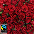 50-roses-rouges-champagne-2990.jpg