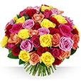 <b>Bonnes affaires</b> - 60 ROSES + 10 OFFERTES ! -