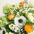 Bouquet-France-Soleil-d-Antan_VZoom.jpg