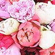 bouquet-de-15-pivoines-et-son-vase-4756.jpg