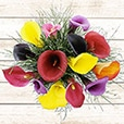 Collection Automne - BOUQUET DE CALLAS MULTICOLORES -