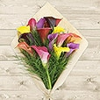 bouquet-de-callas-multicolores-6519.jpg