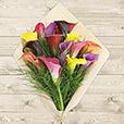 bouquet-de-callas-multicolores-6519.jpg
