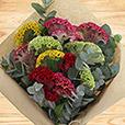 bouquet-de-celosies-varies-2546.jpg