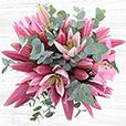 Collection Hiver - BOUQUET DE LYS ROSES -