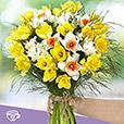 bouquet-de-narcisses-et-son-masque-b-4027.jpg
