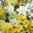 bouquet-de-narcisses-variees-xl-4161.jpg