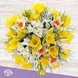 bouquet-de-narcisses-varies-et-son-v-3935.jpg