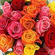 bouquet-de-roses-variees-et-ses-choc-3938.jpg