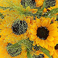 bouquet-de-tournesols-2563.jpg