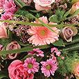 coussin-rose-1448.jpg