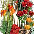 jardiniere-sacree-1591.jpg