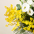mon-bouquet-de-mimosa-7646.jpg