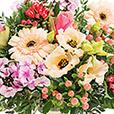 perroquet-et-son-vase-offert-2607.jpg