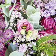 pink-romanesque-xxl-5513.jpg